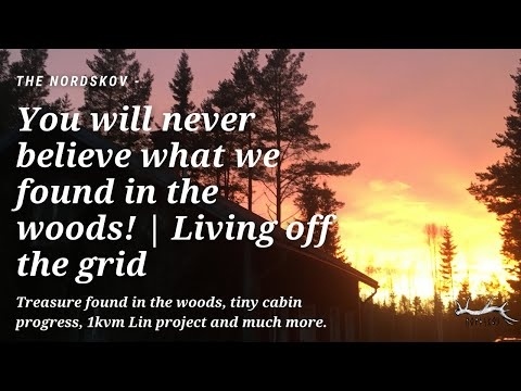You won't believe what we found in the woods | Living off the grid