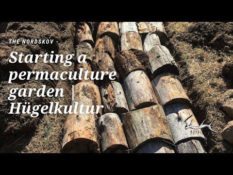 Starting a permaculture garden   Hügelkultur